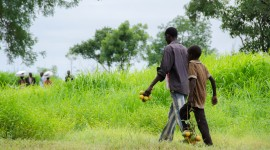 Civilians displaced from Wau by government violence in 2016 subsist on fruit